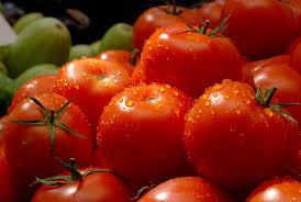 Земјоделците од Струмичко реагираат на ниските откупни цени на доматите