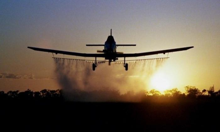 Градот ќе снима за да докаже дека прска против комарци: Граѓаните испокасани