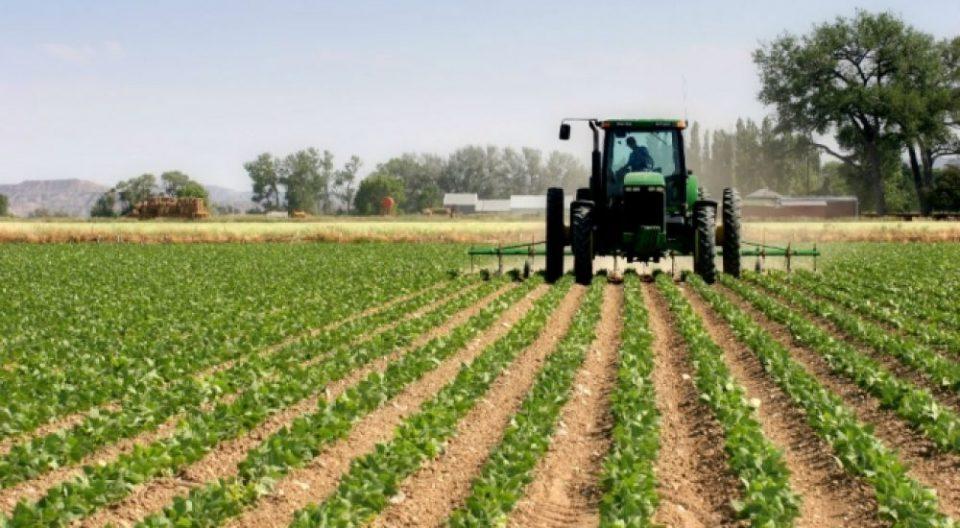 Невремето уништи 5.000 хектари посеви во овчеполскиот регион