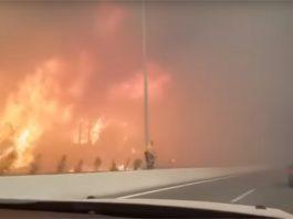 Расте бројот на жртви од пожарите во Грција, жена почина во болница