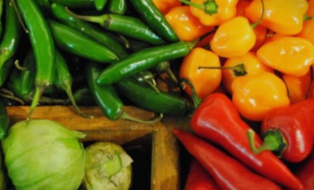 """Градинарите предупредуваат на проблеми со откупот на пиперката """"куртовска капија"""""""