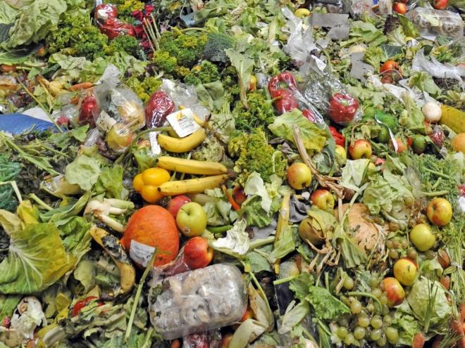 Одбележување на Светскиот ден на храната – 821 милион луѓе во светот гладуваат