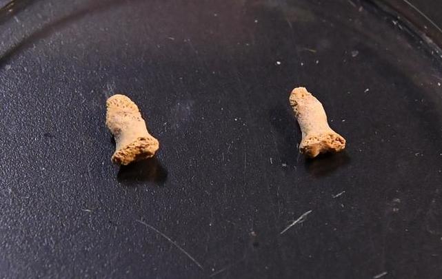 Во Полска пронајдени коски од дете стари илјадници години