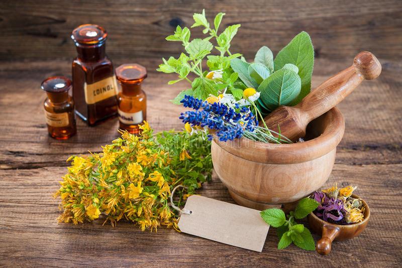 Лавандата релаксира и смирува, еукалиптусот го бистри умот и дава енергија дејството на етеричните масла