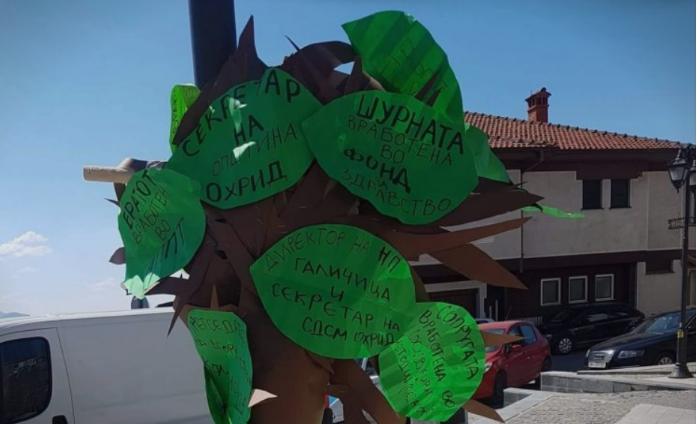 """""""Во Охрид дојде Заев и изникна дрвото на непотизмот"""""""