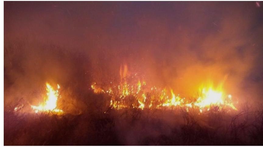 Пожар беснее над Прилеп