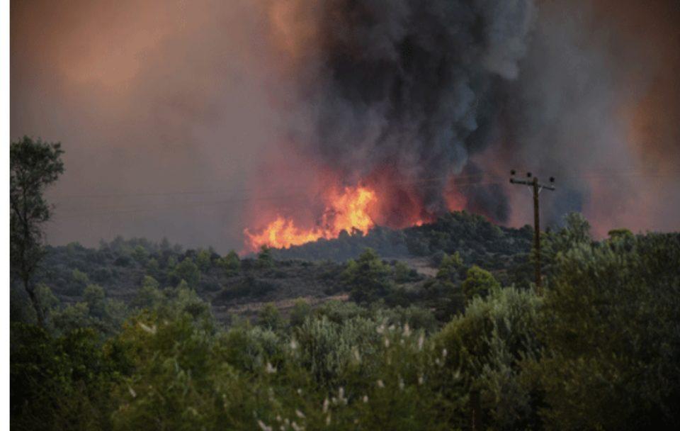 Пожари беснеат низ Македонија: Гореше во Струга, Берово, Свети Николе, Тетово…