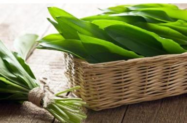 Овој зеленчук расте диво и ретко може да се пронајде на пазарите, а за 20 пати е полековит од лукот!